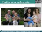 familias por su configuraci n1