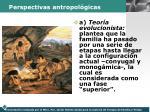 perspectivas antropol gicas1
