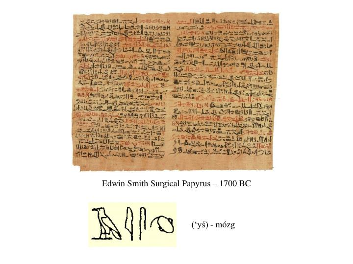 Edwin Smith Surgical Papyrus – 1700 BC