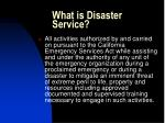what is disaster service