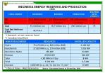 indonesia energy reserves and production 2008