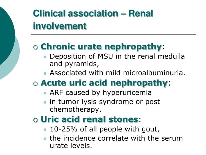 Clinical association – Renal involvement