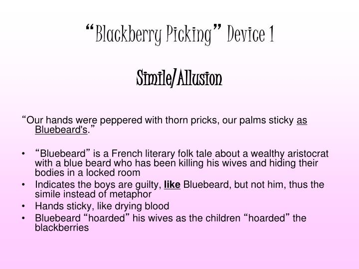 blackberry picking metaphor