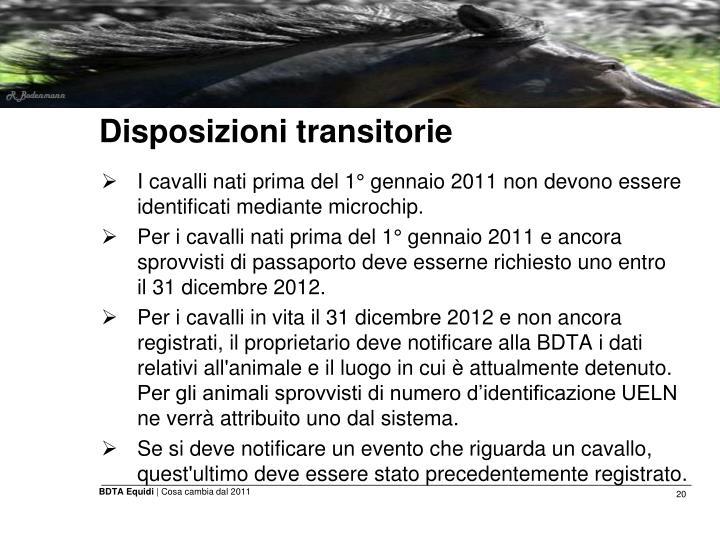 Disposizioni transitorie
