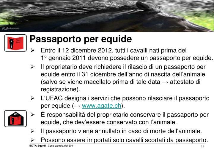 Passaporto per equide
