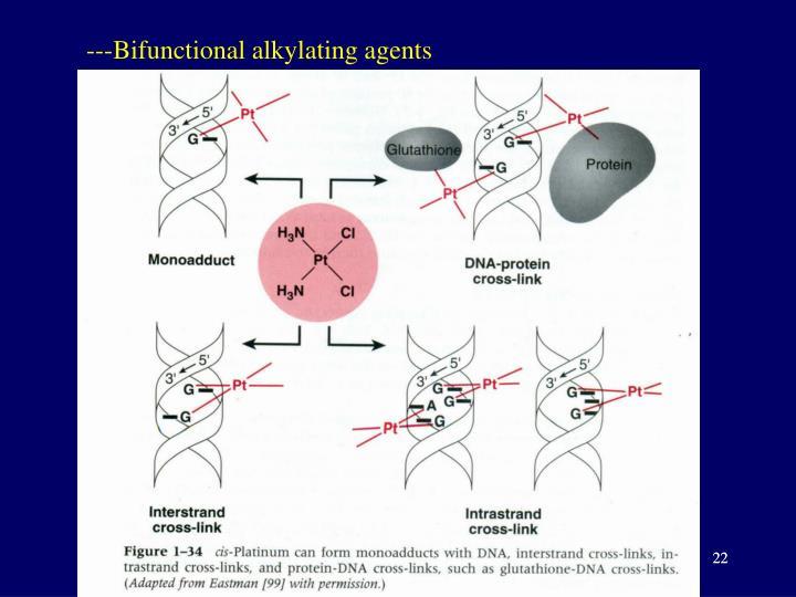 ---Bifunctional alkylating agents