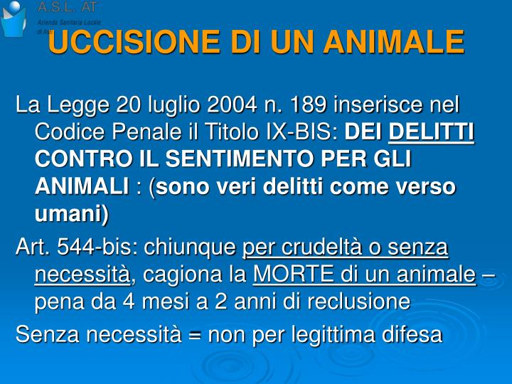 UCCISIONE DI UN ANIMALE