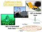 california s gold1