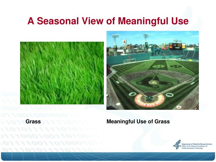 A seasonal view of meaningful use1