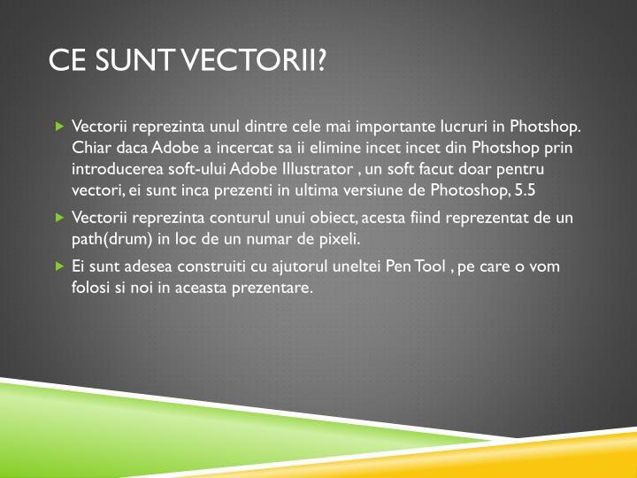 Ce sunt vectorii