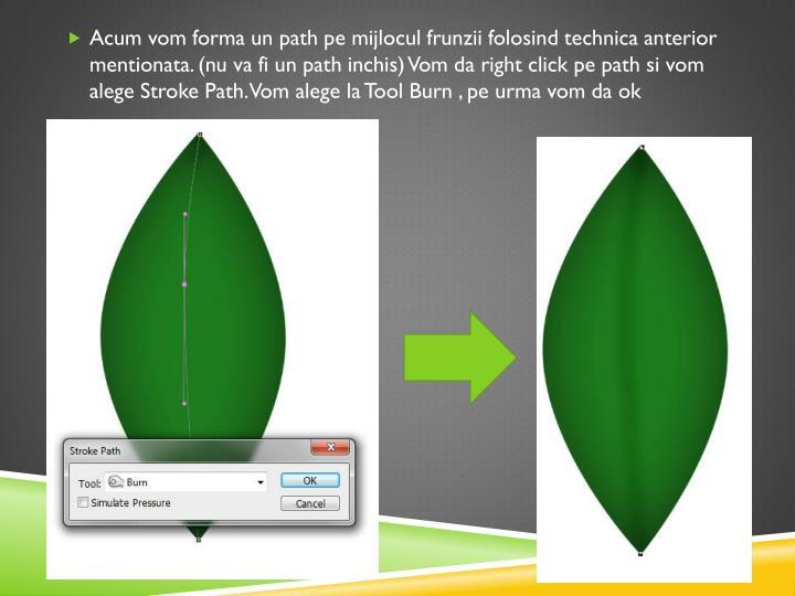 Acum vom forma un path pe mijlocul frunzii folosind technica anterior mentionata. (nu va fi un path inchis) Vom da right click pe path si vom alege Stroke Path. Vom alege la Tool Burn , pe urma vom da ok