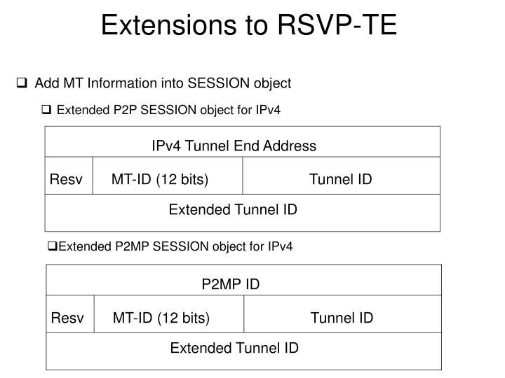 Extensions to rsvp te