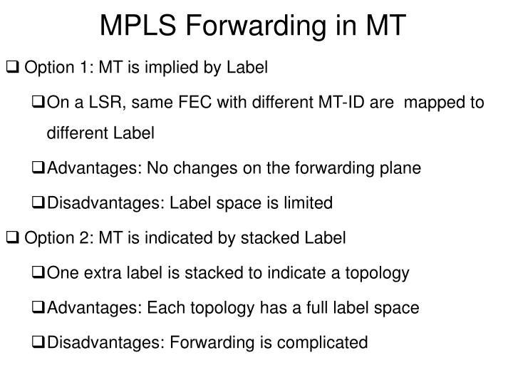 MPLS Forwarding in MT