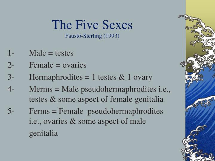 the five sexes