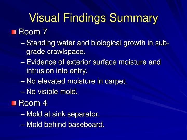 Visual Findings Summary