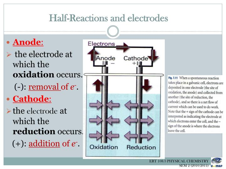 Half-Reactions and electrodes