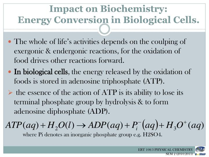 Impact on Biochemistry: