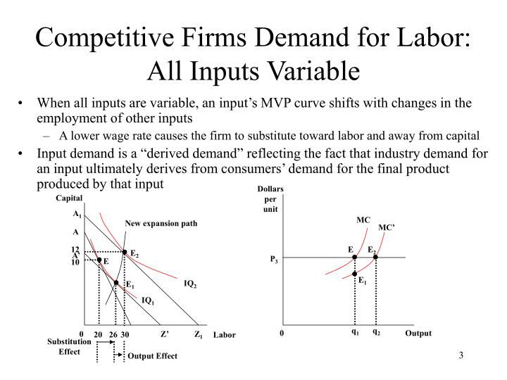 Competitive firms demand for labor all inputs variable
