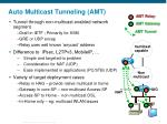auto multicast tunneling amt