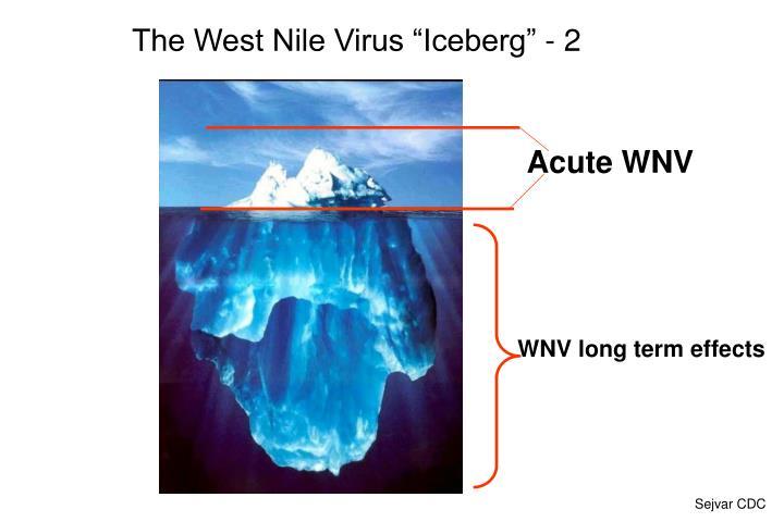 "The West Nile Virus ""Iceberg"" - 2"