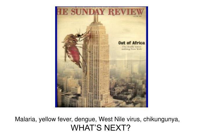 Malaria, yellow fever, dengue, West Nile virus, chikungunya,