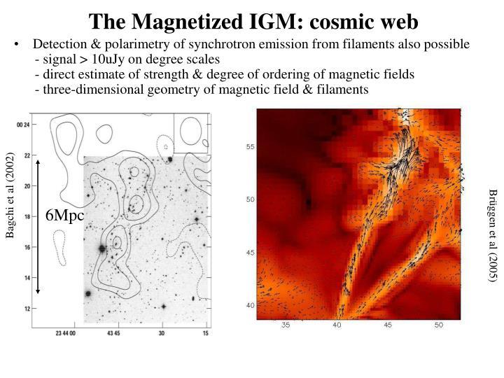 The Magnetized IGM: cosmic web