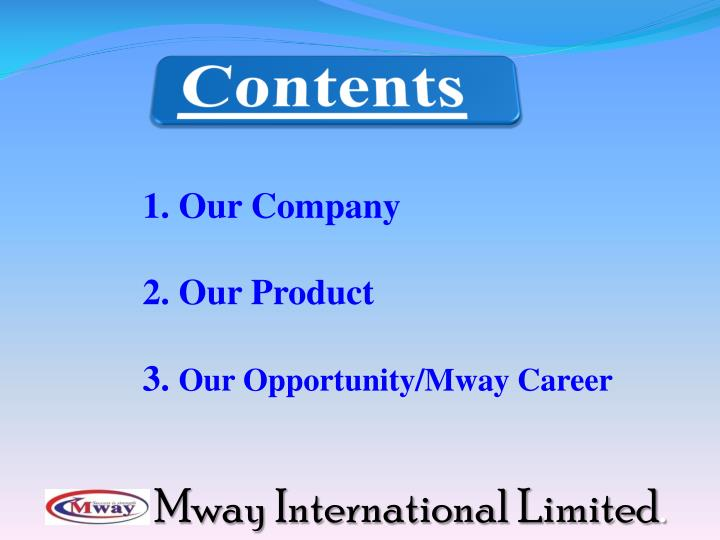 1. Our Company