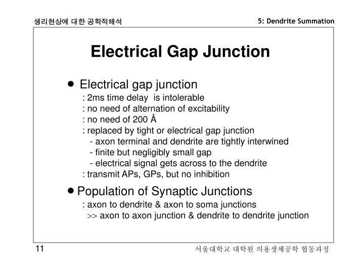 Electrical Gap Junction