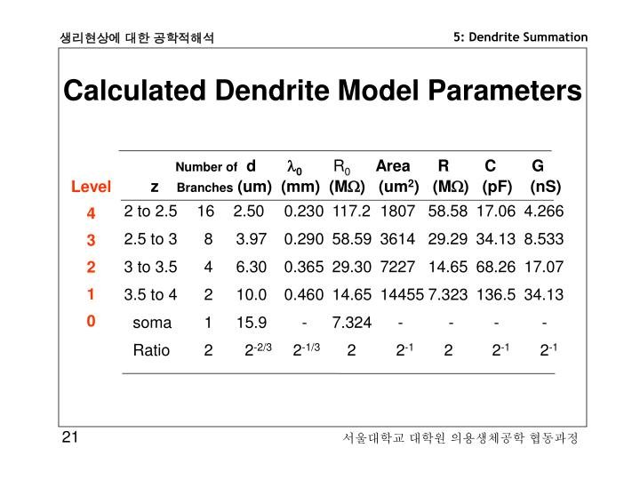 Calculated Dendrite Model Parameters