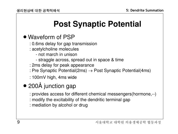 Post Synaptic Potential