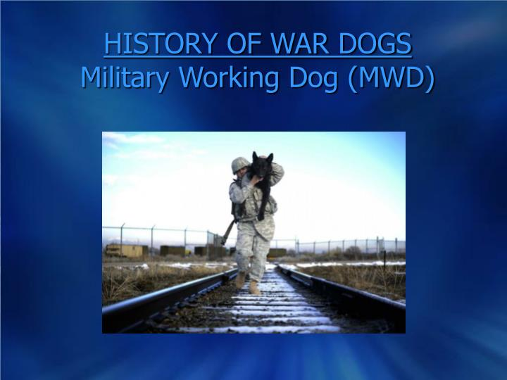 history of war dogs military working dog mwd n.
