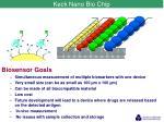 keck nano bio chip