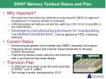 swnt memory testbed status and plan