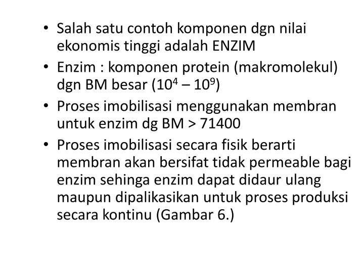 Salah satu contoh komponen dgn nilai ekonomis tinggi adalah ENZIM