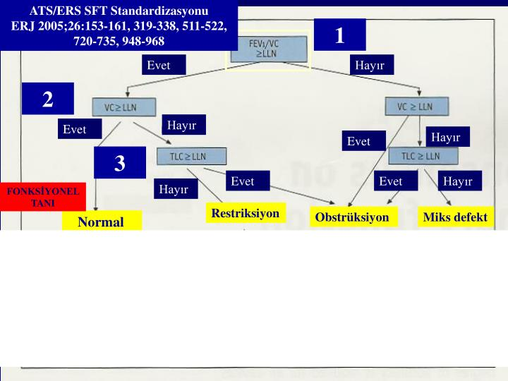ATS/ERS SFT Standardizasyonu                 ERJ 2005;26:153-161, 319-338, 511-522,             720-735, 948-968