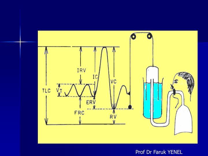 Prof Dr Faruk YENEL