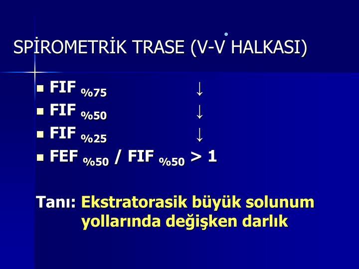 SPİROMETRİK TRASE (V-V HALKASI)
