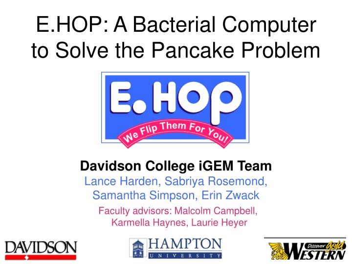 e hop a bacterial computer to solve the pancake problem n.