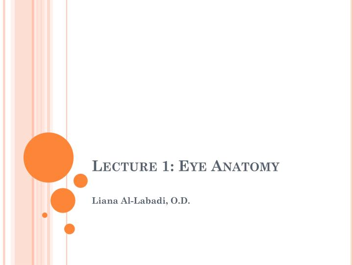 Lecture 1 eye anatomy