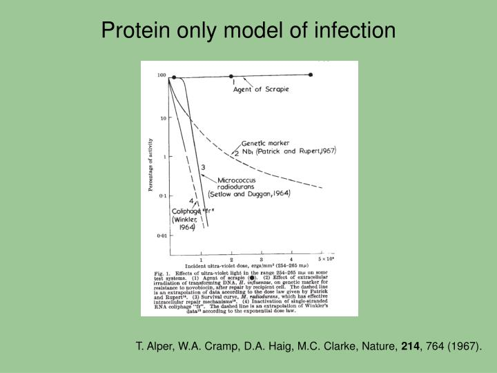 Protein only model of infection