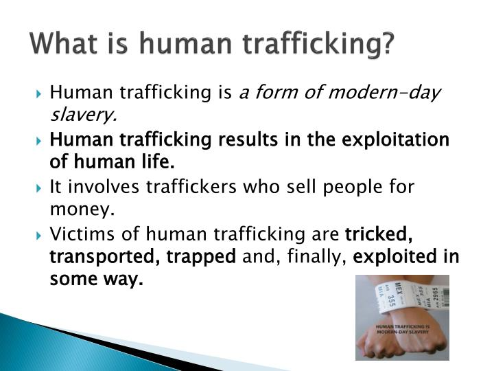 macro cause of human trafficking Human trafficking 101: the economics of the trade referring to human trafficking and its victims of the discomfort such an analysis may cause.