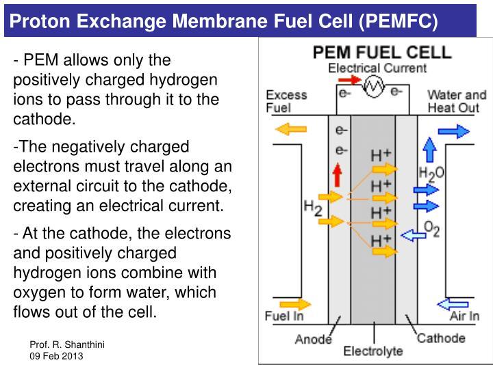 Proton Exchange Membrane Fuel Cell (PEMFC)