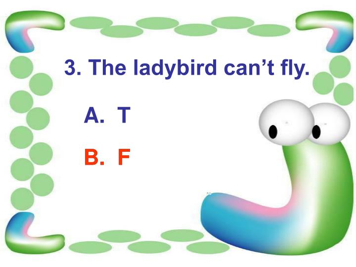 3. The ladybird can't fly.
