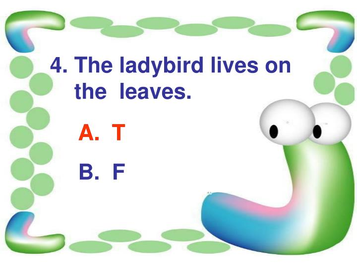 4. The ladybird lives on