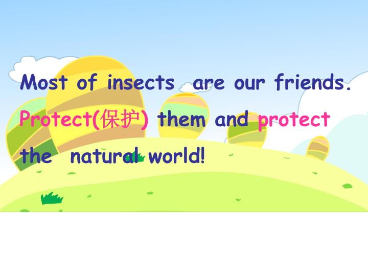 Most of insects  are our friends.