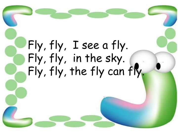 Fly, fly,  I see a fly.