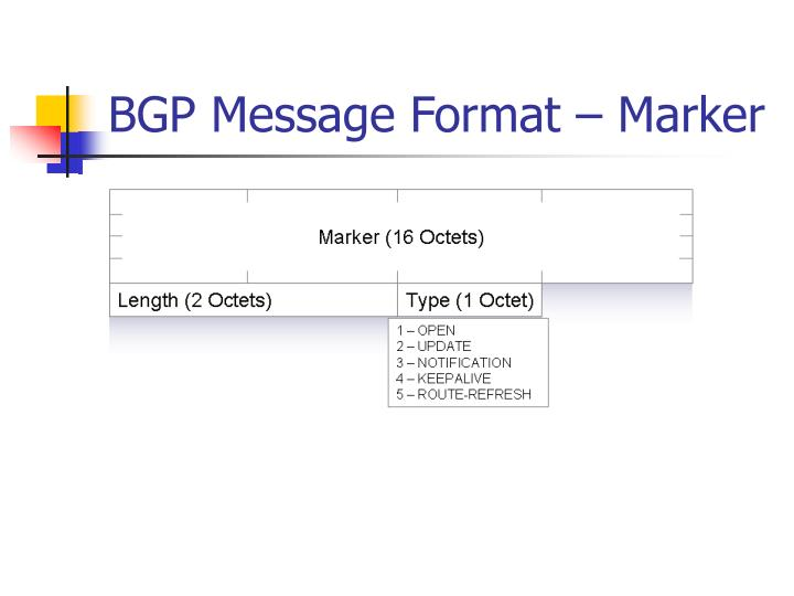 BGP Message Format – Marker