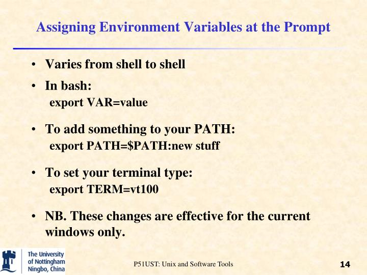Assigning Environment Variables at the Prompt