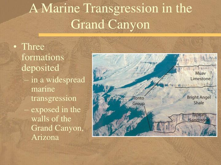 A Marine Transgression in the Grand Canyon