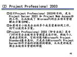 2 project professional 2003